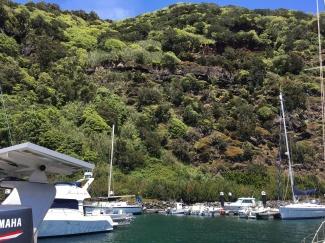 une jolie marina toute tranquille au milieu d'un simple petit village...